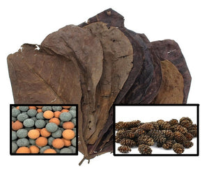 5 Catappa Leaves, 25 Alder Cones & 10 Mineral Balls (Indian Almond Leaves, Terminilia)