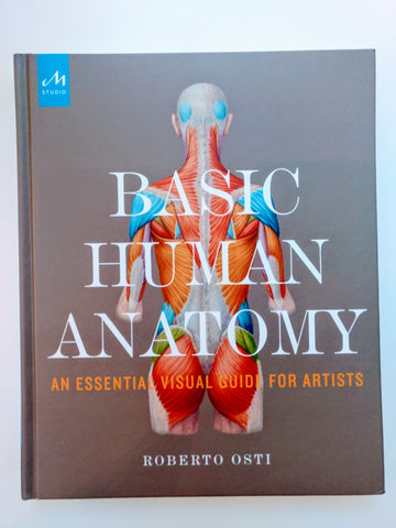 Basic Human Anatomy
