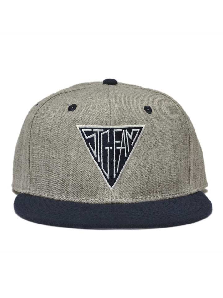 Triangle Grey & Navy Snapback Hat