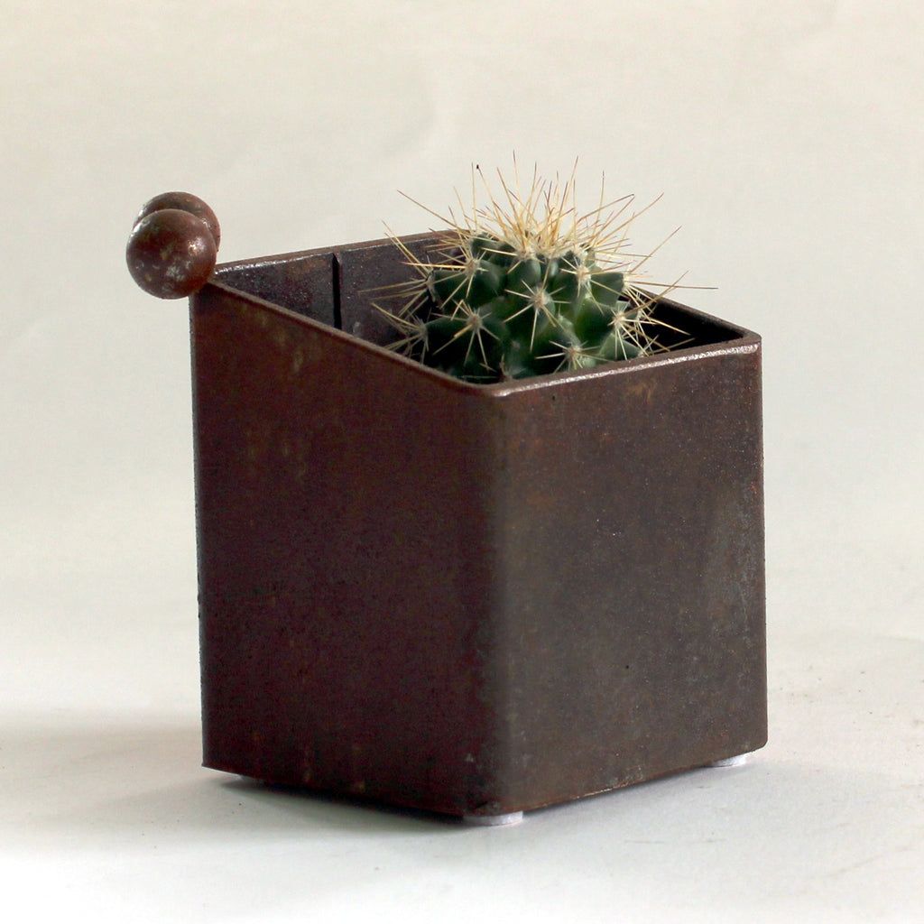 Steel planter with cement bottom