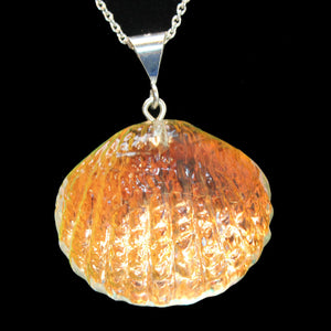 Scallop Pendants