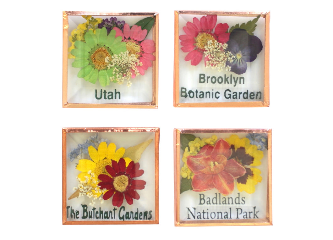 Petal Lane Gift Custom Beveled Glass Magnets with Copper Trim