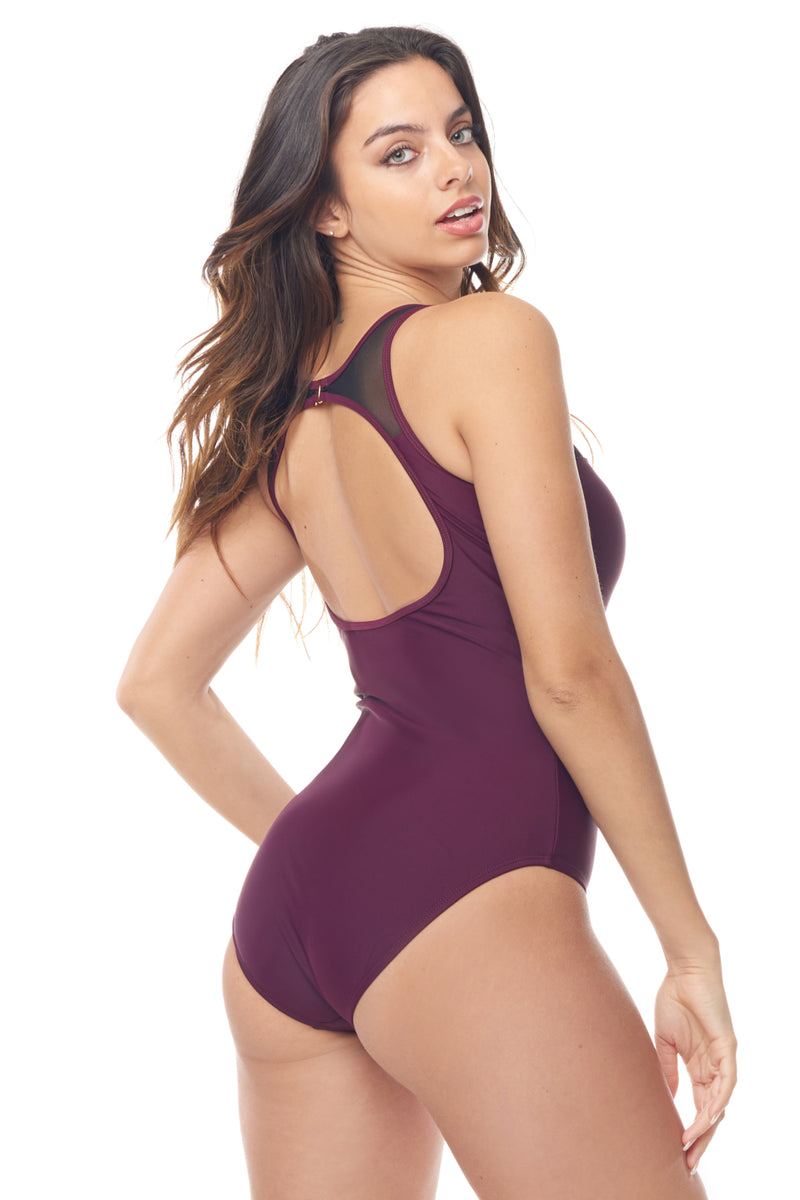 Burgundy Mesh One Piece Swimsuit