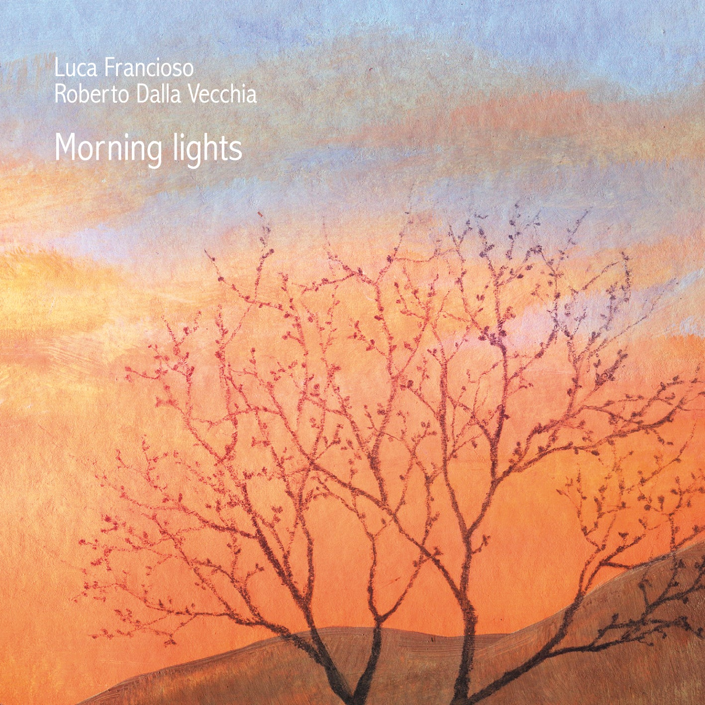 Morning Lights (CD) - Roberto Dalla Vecchia