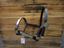 Leather Show Halter Trail Western Horse Black Leather Silver