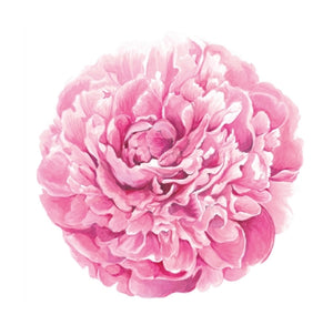 Placemats, Peony (Set of 12)