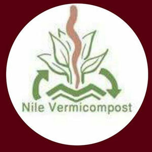 Nile earthworms vermicompost