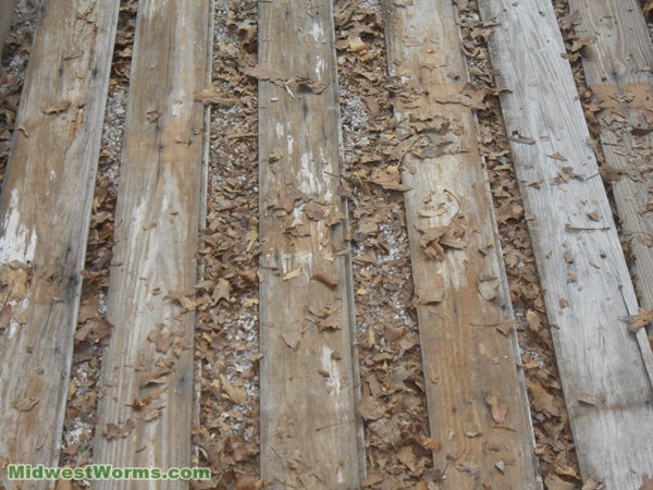 worm bedding boards - midwest worms