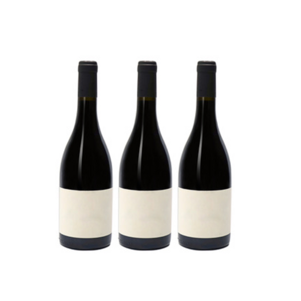 """Into Wine"" 3-Pack from Parcelle - Parcelle Wine"