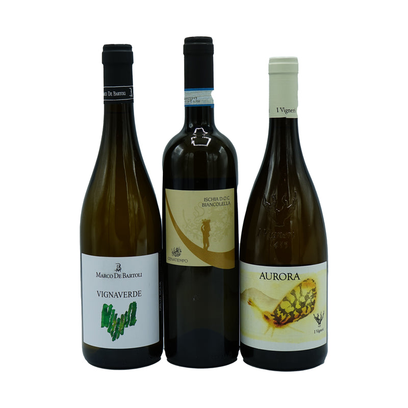 Southern Italy 6-pack from Other - Parcelle Wine