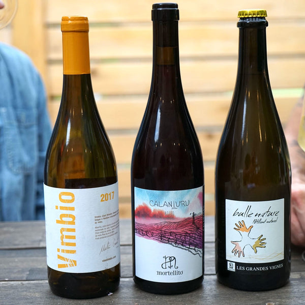 Natural Wine 3-pack from Parcelle - Parcelle Wine
