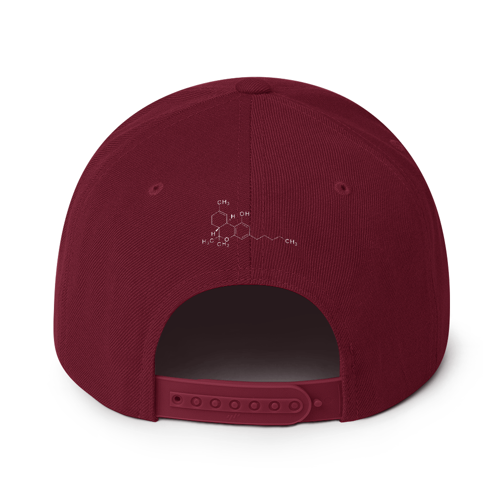 SmokeStash Leaf Snapback - SmokeStash