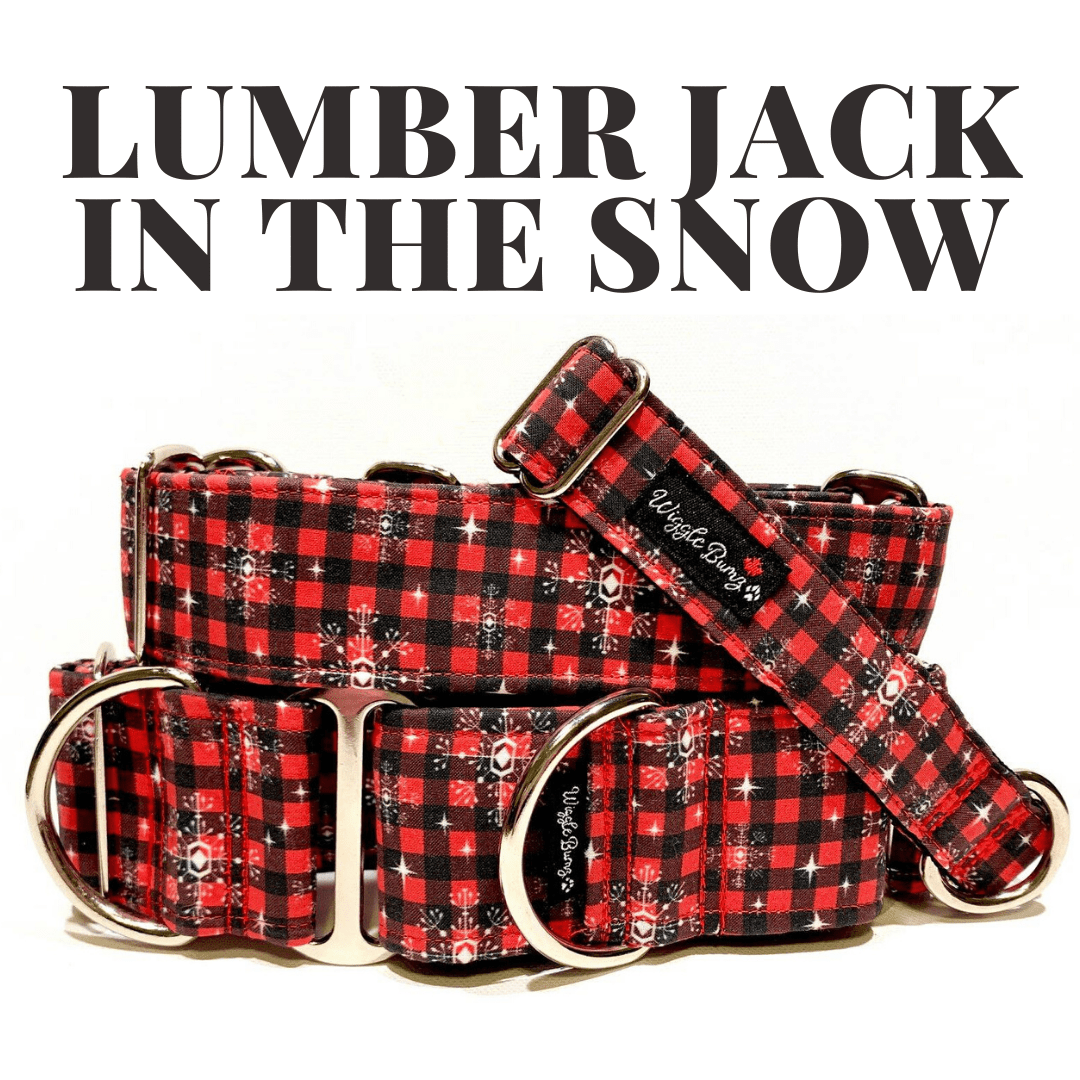 WiggleBumz Lumber Jack in The Snow Dog Collar | BigPawShop.ca