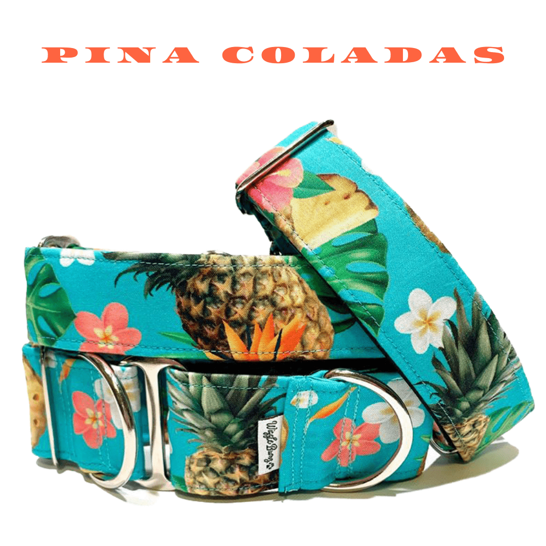WiggleBumz Pina Coladas (out of stock) Dog Collar | BigPawShop.ca