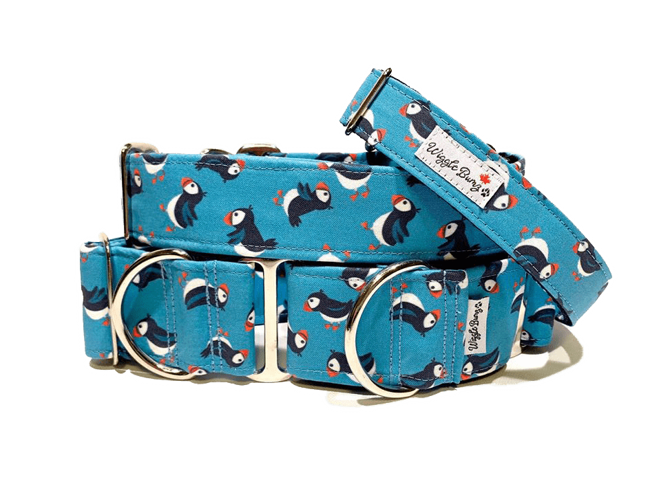 Dog Collar with Penguins