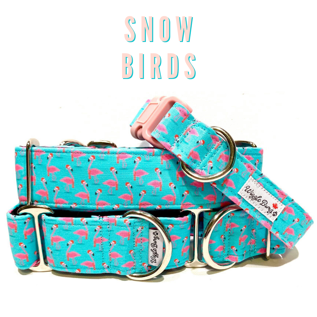 WiggleBumz Snow Birds Dog Collar | BigPawShop.ca