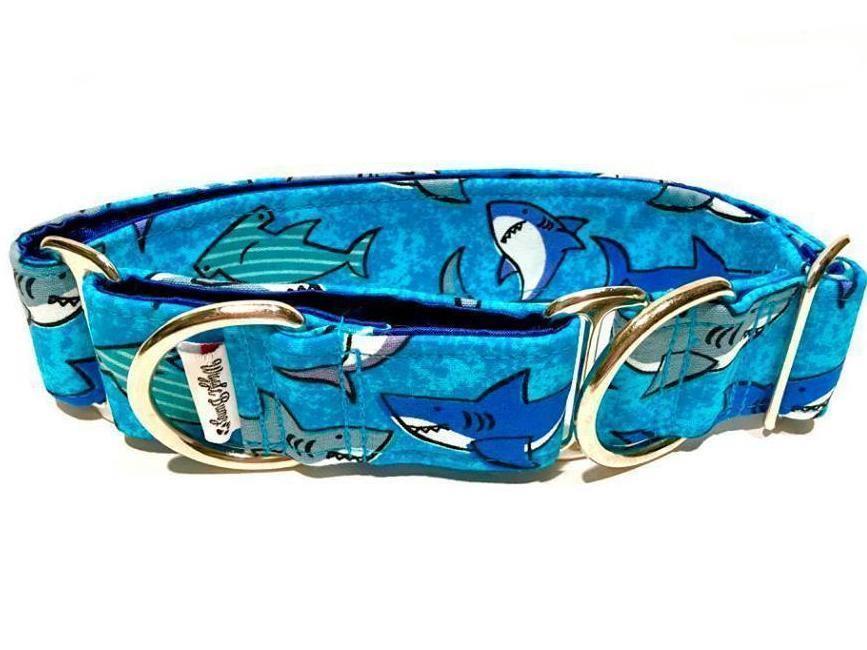 WiggleBumz Sharky Waters Dog Collar | BigPawShop.ca