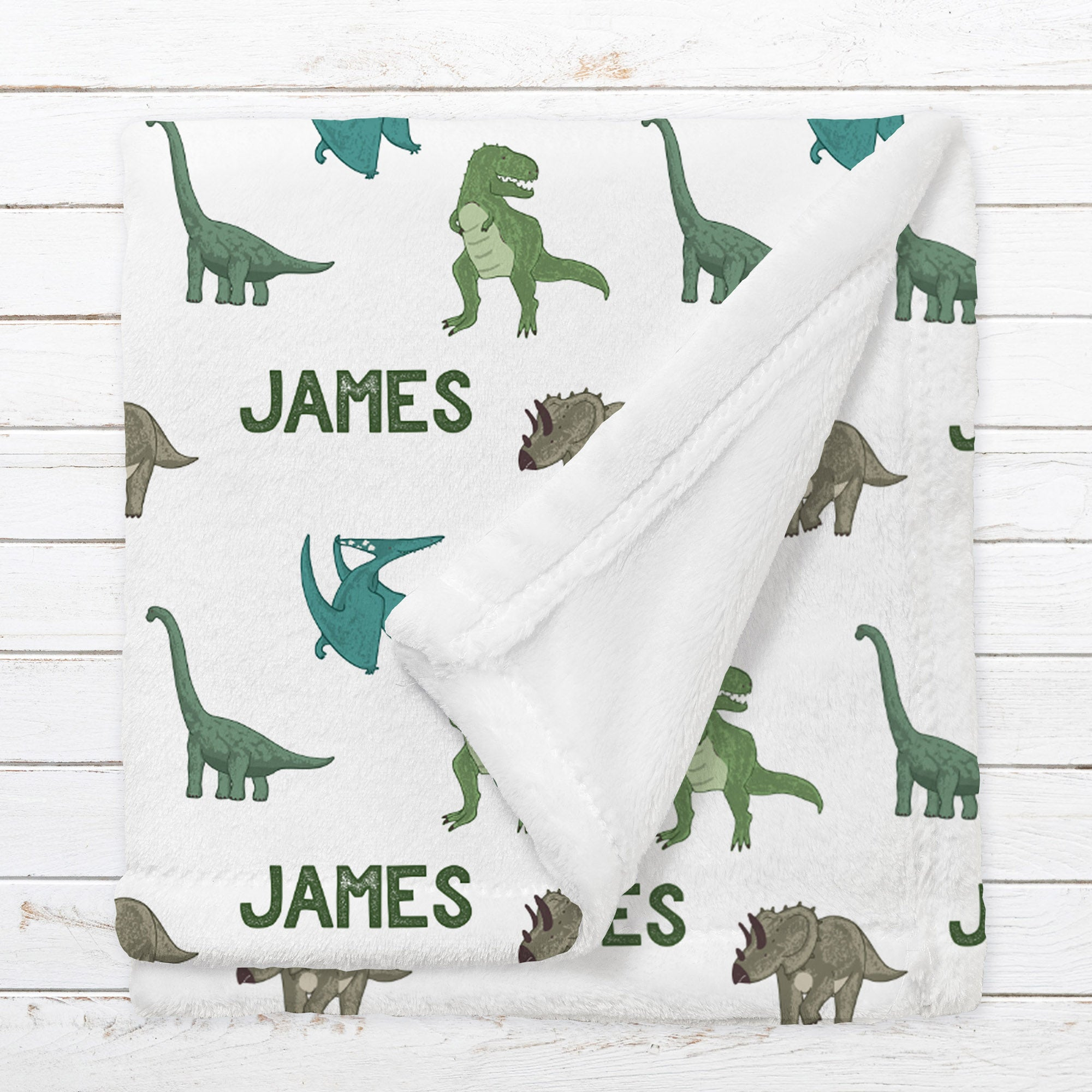 Personalized Dinosaur Blanket for Babies, Toddlers and Kids - A Roar Party