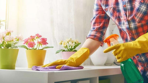a person performing spring cleaning
