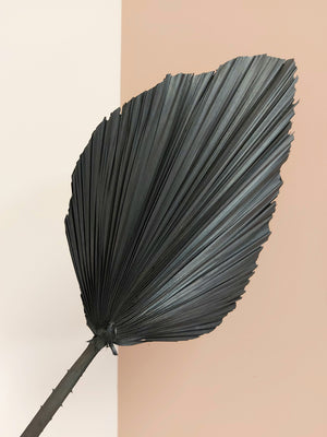 Anahaw Leaf- Black