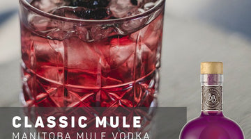 Classic Mule Cocktail