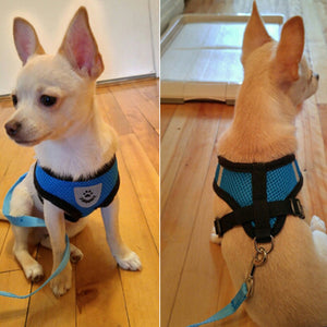 Breathable Air Nylon Mesh Puppy Dog Pet Harness and Leash Set