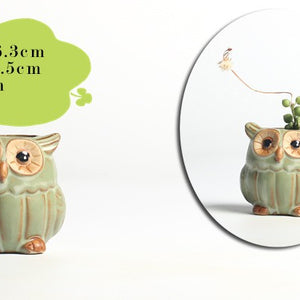 5 Pcs / set Owl-shaped Succulent Planters Pottery Vase