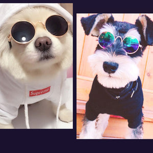 Funny Pet Glasses Eye-wear Props for Cats & Dogs