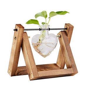 Heart Shaped Decorative Hydroponic Tabletop Glass Planter with Wood Stand