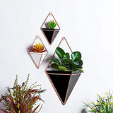 Hanging Planter Vase & Small Geometric Wall Decor Container