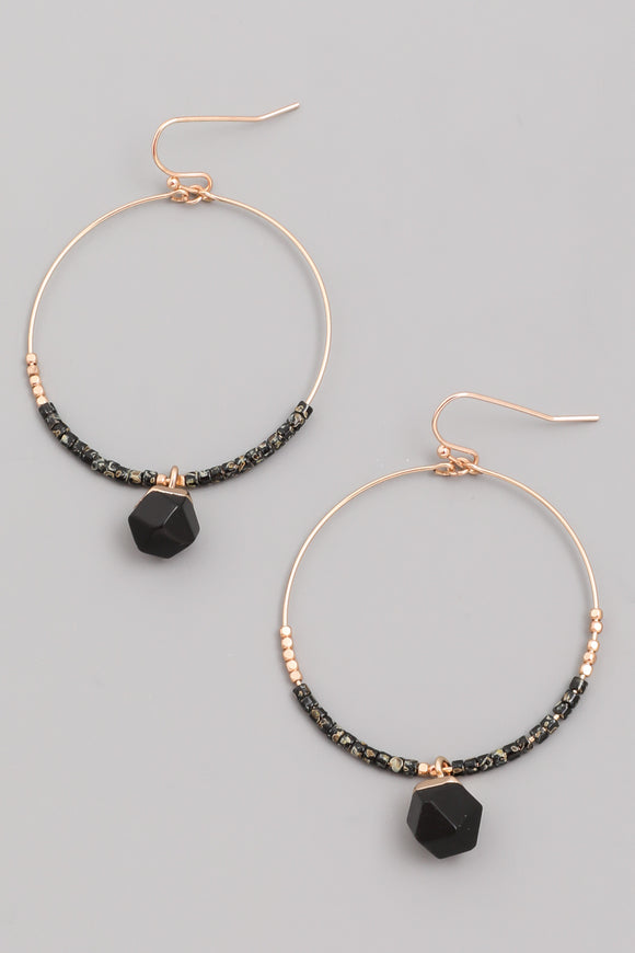 Black Hoop Stone Drop Earrings