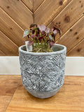 Cement Embossed Planter Large