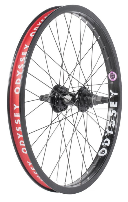 "Odyssey Quadrant Cassette 20"" Wheel in black at Albe's BMX Online"
