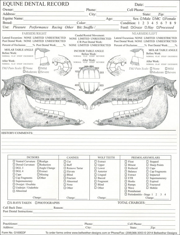 Equine Dental Chart