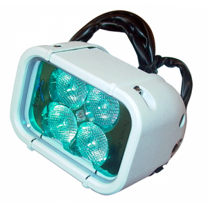 4 LED Supervision 'Spreader' Light