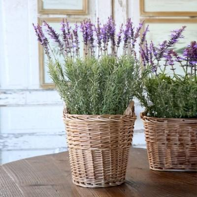 Instagram Famous Potted Faux Lavender Basket