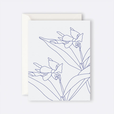 Father Rabbit Stationery | Card | BLUE JASMINE