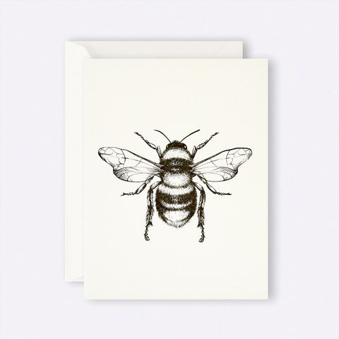 Father Rabbit Stationery | Card | Bumble Bee