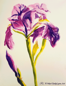Iris Painting - Essex Paint and Sip