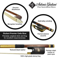Giuliani Gold Brazilwood Cello Bow