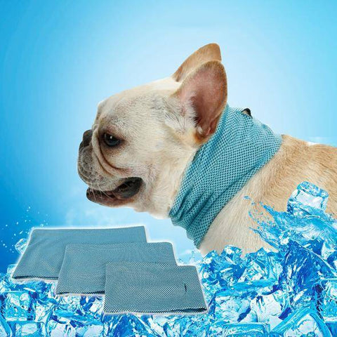 French Bulldog Summer Cooling Bandana Bandana Custom Frenchie Store