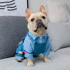 Denim Dungarees / Overalls - Custom Frenchie Store
