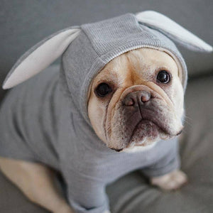 Frenchie Bunny Costume Frenchie Costume Custom Frenchie Store