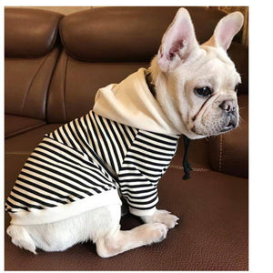 Frenchie Striped Hoodie Frenchie Jacket Custom Frenchie Store