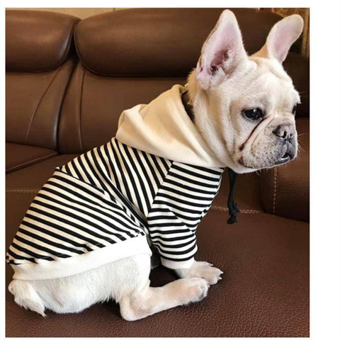 Image of Frenchie Striped Hoodie Frenchie Jacket Custom Frenchie Store