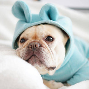 Frenchie Onesie 'Not My Fault' - Custom Frenchie Store