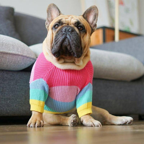 Rainbow Days Sweater - Custom Frenchie Store