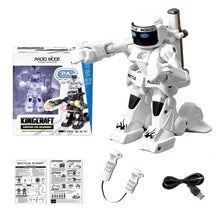 2.4G RC Humanoid Fighting Robots with Joystick Controls (Black/White)
