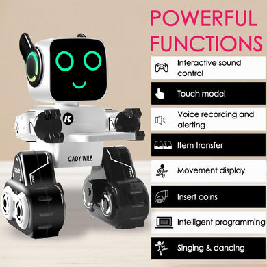 Intelligent Interactive Robot Companion for Kids