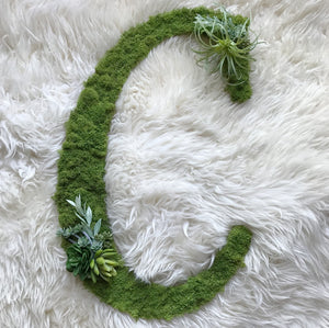 Moss Floral Decorative Letter - Traditional Font